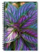 Beautiful Foliage  Spiral Notebook