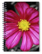 Beautiful Fuchsia Flower Spiral Notebook