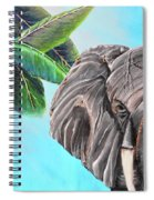 Beautiful Giant Spiral Notebook