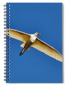 Beautiful Heron Spiral Notebook