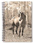 Beautiful Horse In Sepia Spiral Notebook