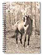 Beautiful Horse In Sepia Spiral Notebook