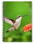 Beautiful Hummingbird Spiral Notebook