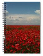 Beautiful Lady And Red Poppies Spiral Notebook