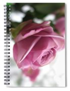Beautiful Lavender Rose 2 Spiral Notebook