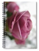 Beautiful Lavender Rose 3 Spiral Notebook