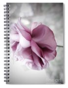 Beautiful Lavender Rose Spiral Notebook