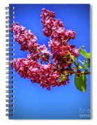 Beautiful Lilac Spiral Notebook