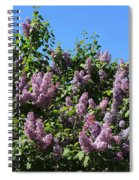 Beautiful Lilacs Day Spiral Notebook