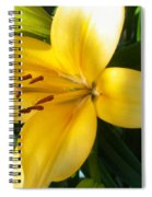 Beautiful Lily I Spiral Notebook