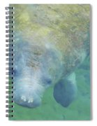 Beautiful Manatee Spiral Notebook