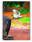 Beautiful Moment With A Bird Take Off , Wall Frame, Art Spiral Notebook