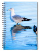 Beautiful Moments In Time Spiral Notebook