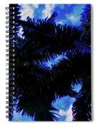 Beautiful Palm In Blue Sky Spiral Notebook