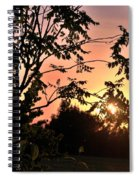 Beautiful Park Sunset View Trees Spiral Notebook