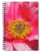 Beautiful Pink Peony Flower Vertical Spiral Notebook