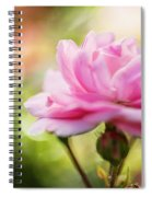 Beautiful Pink Rose Blooming In Garden With Natural Bokeh Spiral Notebook