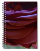 Beautiful Purple Rose Macro 2 Spiral Notebook