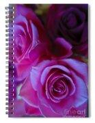 Beautiful Purple Roses 2 Spiral Notebook