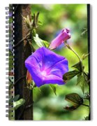 Beautiful Railroad Vine Flower II  Spiral Notebook