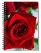 Beautiful Red Rose Abstract 3 Spiral Notebook