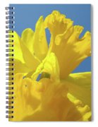 Beautiful Spring Daffodil Bouquet Flowers Blue Sky Art Prints Baslee Troutman Spiral Notebook