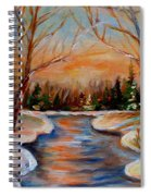 Beautiful  Spring Thaw Spiral Notebook