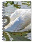 Beautiful Swan Spiral Notebook
