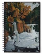 Beautiful Swans Moving In The River Path Spiral Notebook