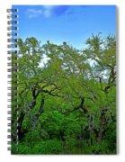 Beautiful Texas View 2 Spiral Notebook