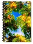 Beautiful Tree Tops In Sky Spiral Notebook
