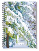 Beautiful Trees Covered With Snow In Winter Park Spiral Notebook