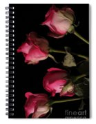 Beautiful Two Tone Roses 6 Spiral Notebook