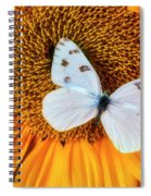 Beautiful White Butterfly On Sunflower Spiral Notebook