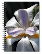 Beautiful White Day Lily Spiral Notebook