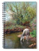 Beautiful White Horse And Enchanting Spring Spiral Notebook