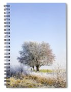 Beautiful Winter Background With Snow Tipped Trees Spiral Notebook