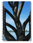 Beautiful Winters Day Spiral Notebook