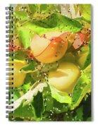 Beautiful Yellow Apple Spiral Notebook