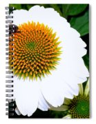 Beauty And The Bee #2 Spiral Notebook
