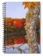 Beauty And The Birch - Nova Scotia Spiral Notebook