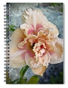 Beauty And The Boulder - Daylily Spiral Notebook