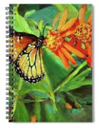 Beauty Attracts Spiral Notebook
