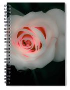Beauty Comes From Within Spiral Notebook