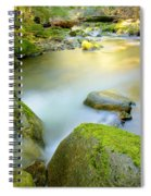 Beauty Creek Spiral Notebook