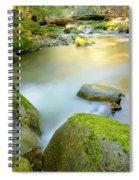 Beauty Creek Spiral Notebook
