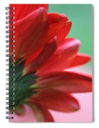Beauty From Behind Spiral Notebook