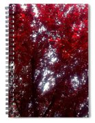Beauty-full Red  Spiral Notebook