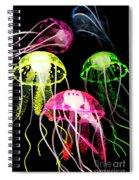 Beauty In Black Seas Spiral Notebook