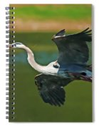 Beauty In Flight Spiral Notebook